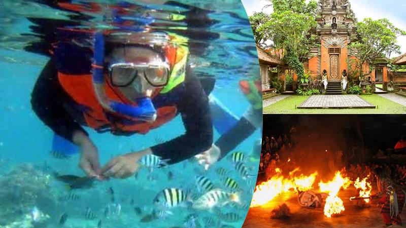 bali snorkeling + ubud tour + kecak fire dance