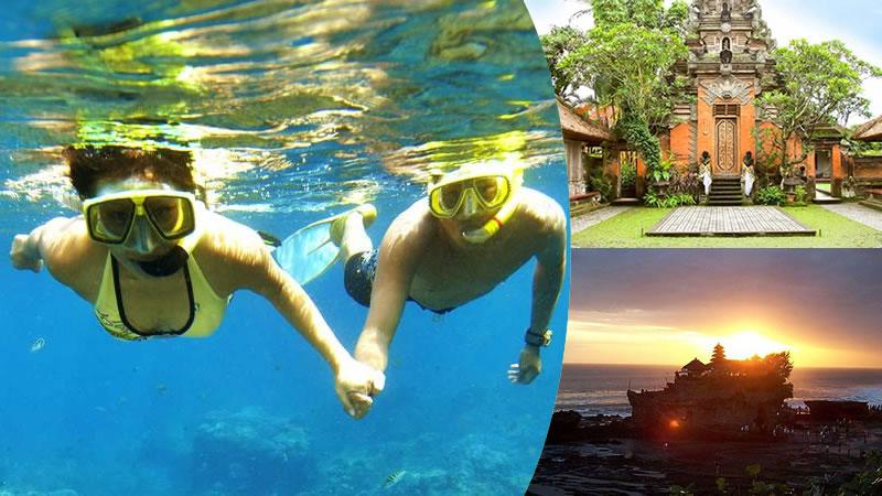 bali snorkeling + ubud + tanah lot tour