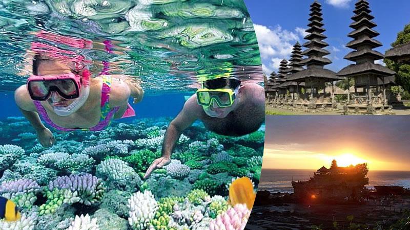 bali snorkeling + royal temple + tanah lot tour