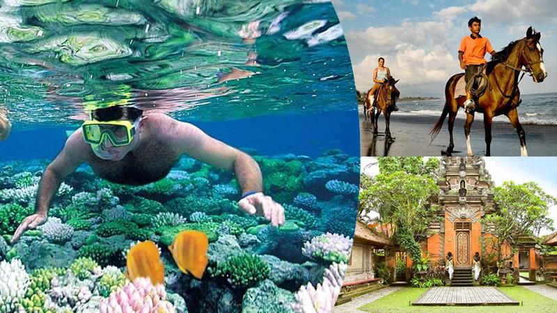 snorkeling tanjung benoa + horse ride + ubud tour