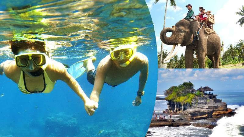 bali snorkeling + elephant ride + tanah lot tour
